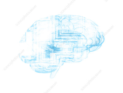 Human brain with circuit boards