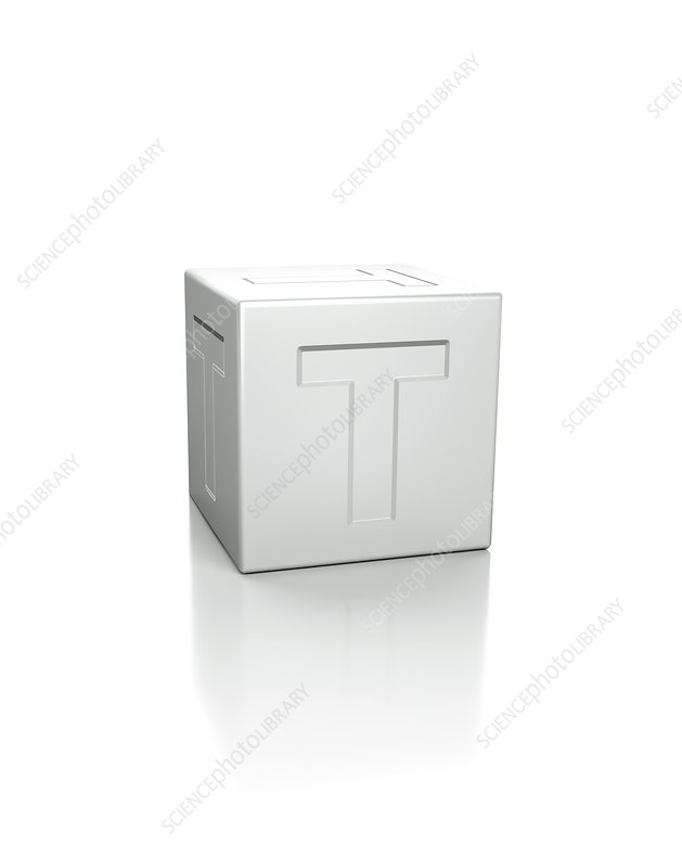 Cube with the letter T embossed