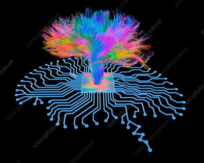 Brain shaped circuit board with fibres
