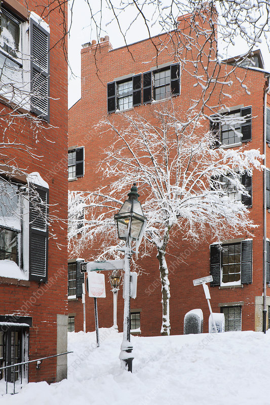 Street view after blizzard in Boston, USA