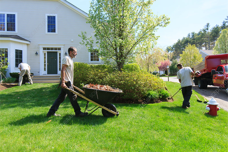 Landscapers at work in garden