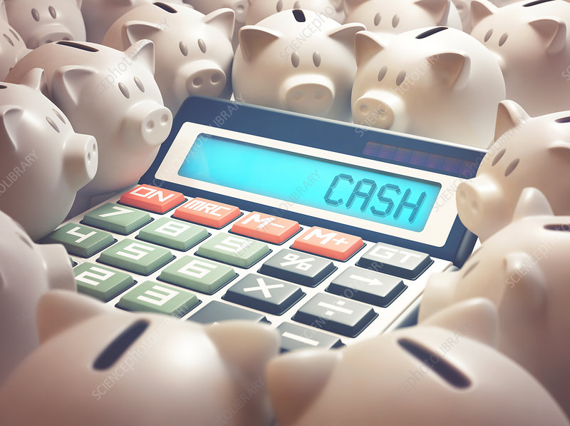 Calculator with cash and piggy bank