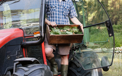 Farmer holding crate of wild herbs and snails
