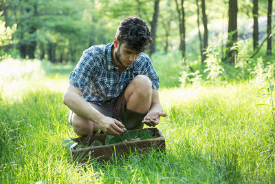 Man crouching to forage wild herbs in forest