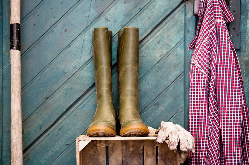 Rubber boots, gardening gloves and shirt by shed