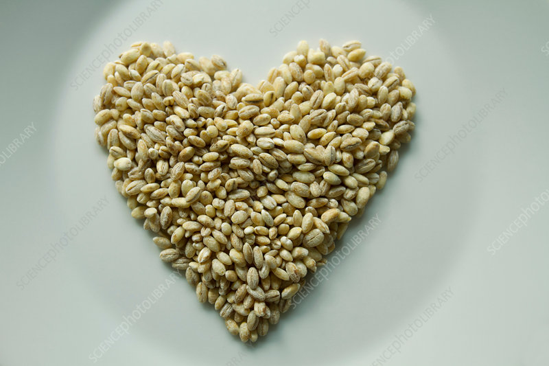 Barley grain in heart shape on plate