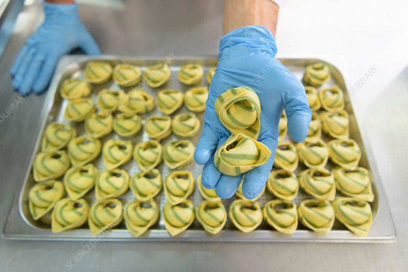 Workers hand making tortellini pasta