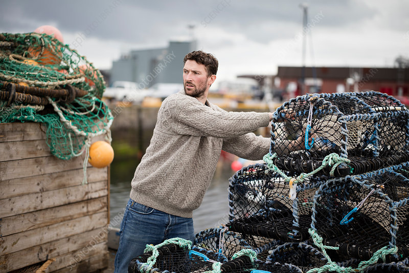 Young fisherman stacking lobster pots