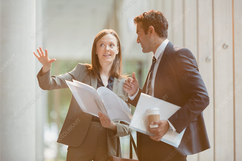 Businesswoman explaining paperwork to businessman