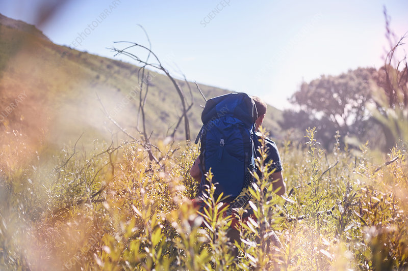 Young man with backpack hiking in field