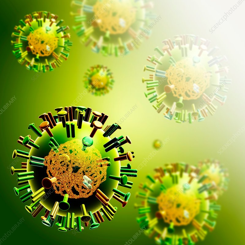 Influenza virus, illustration