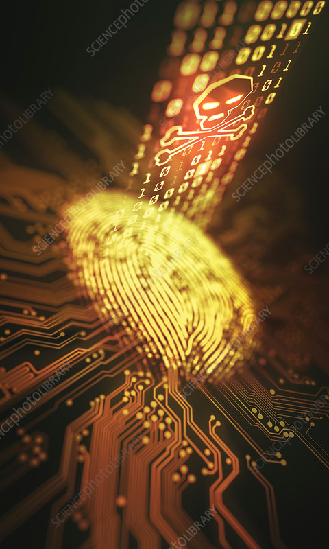 Fingerprint and printed circuit board, illustration