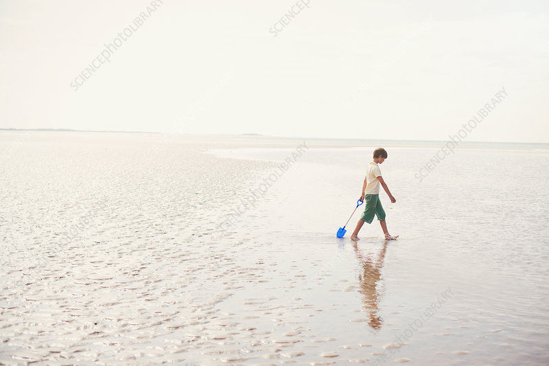 Boy walking with shovel in wet sand
