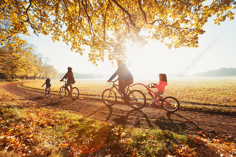 Young family bike riding in autumn park
