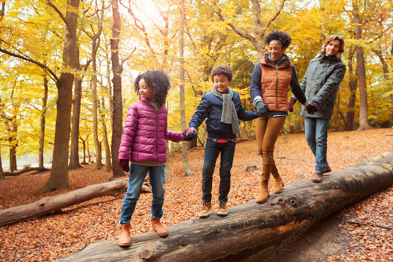 Young family holding hands walking on log in woods