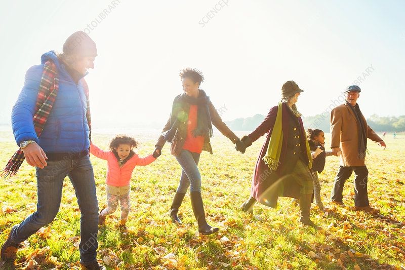 Family holding hands walking in autumn park