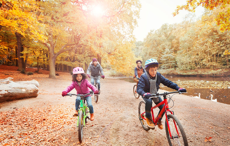 Young family bike riding along pond in autumn park