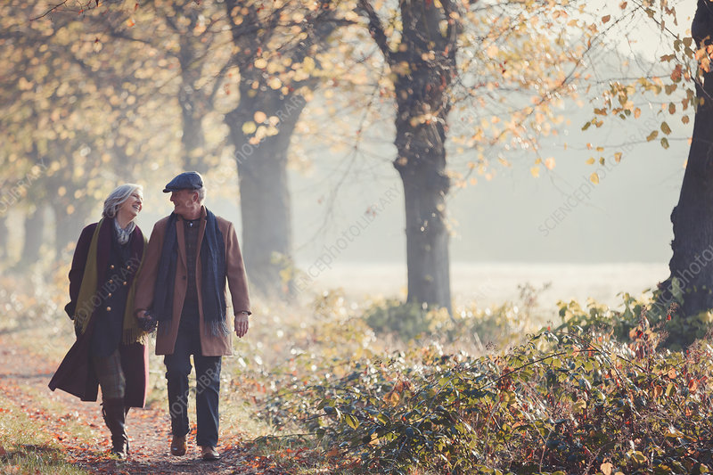 Senior couple holding hands walking in autumn park