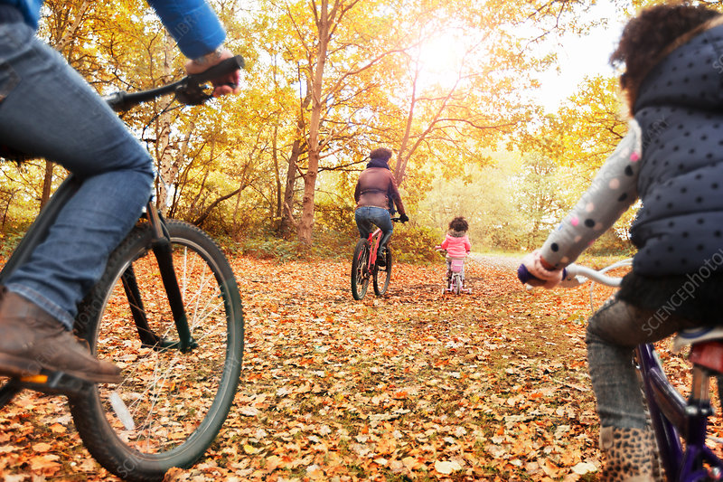 Young family bike riding in autumn woods