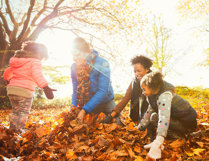 Young family playing in autumn leaves in park