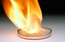Petri dish with flames