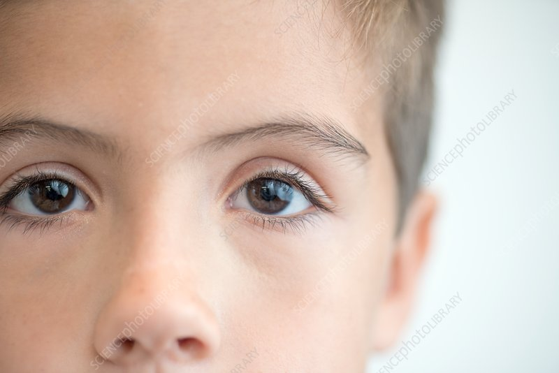 Boy with brown eyes, close up portrait