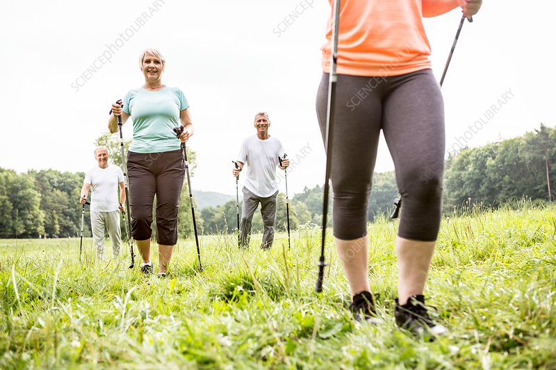 Four people walking in grass with walking poles