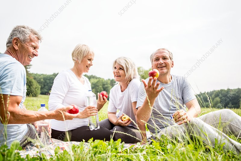 Four people sitting on grass with apples