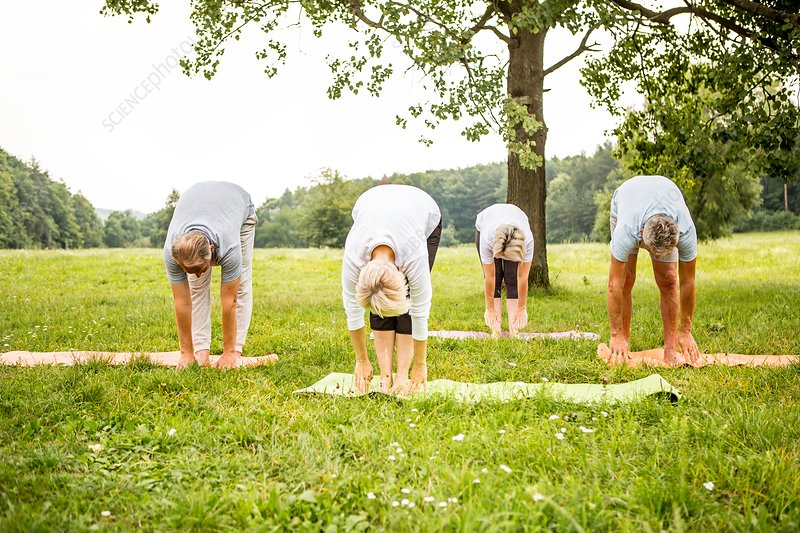 Four people doing yoga in field