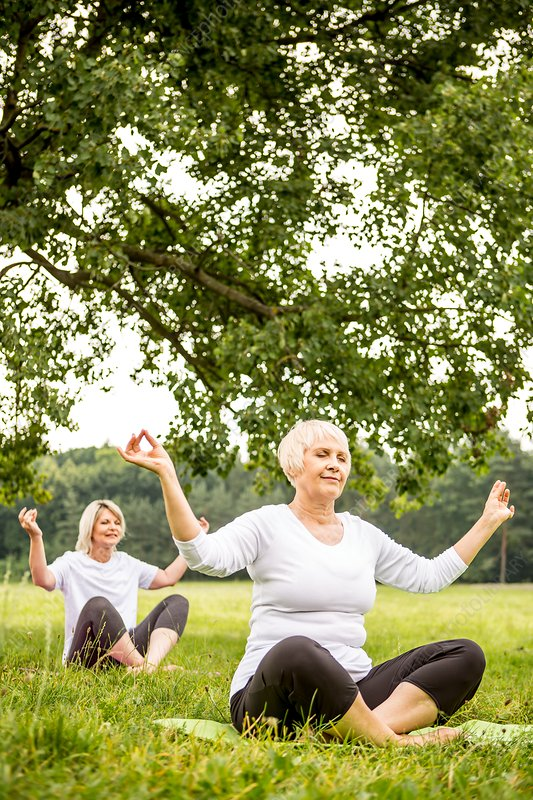 Two women doing yoga in field