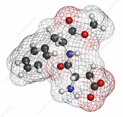 Aspartame artificial sweetener molecule