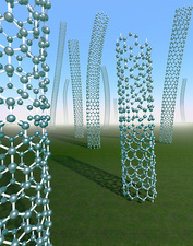 Carbon nanotubes growing in grassy plain