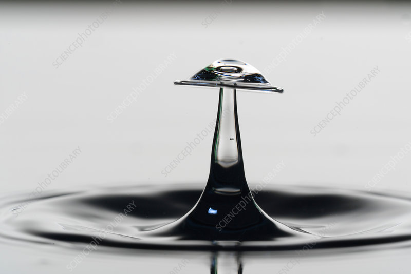 Water droplet on water surface