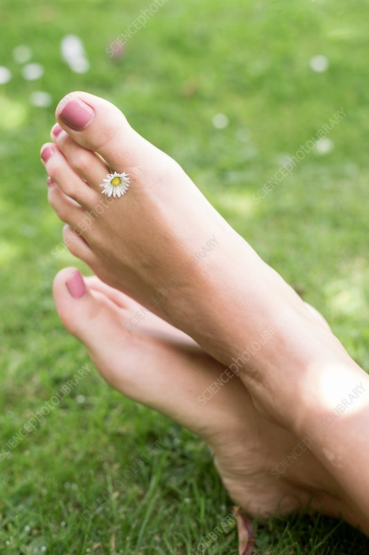 Woman on grass with daisy between toes