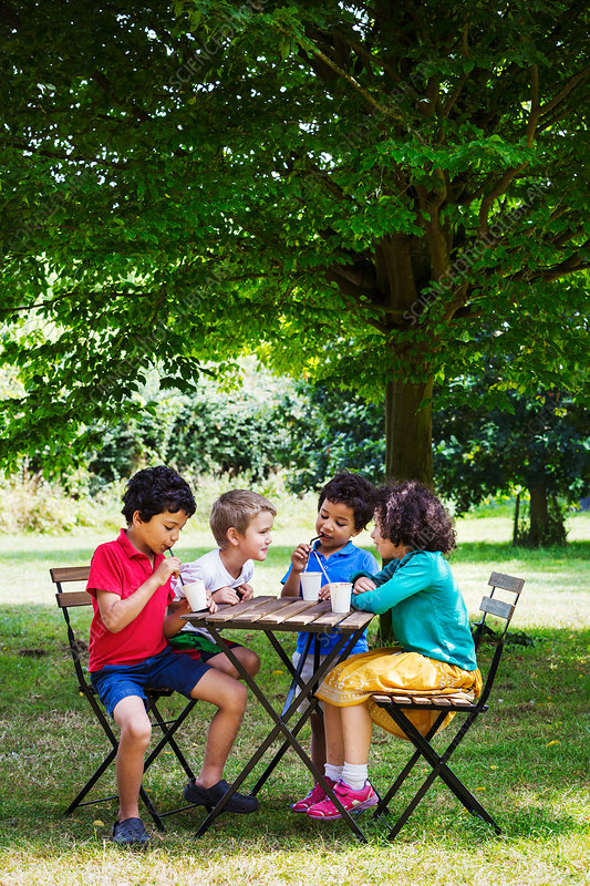 Four children sitting round a table on a lawn