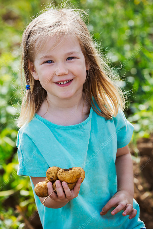 A girl holding potatoes in a vegetable patch