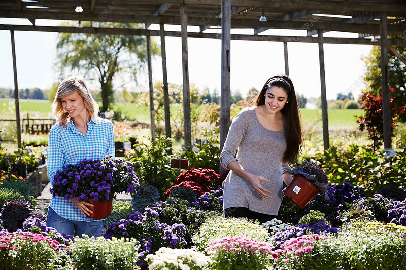 Two women choosing flowering plants at a garden centre