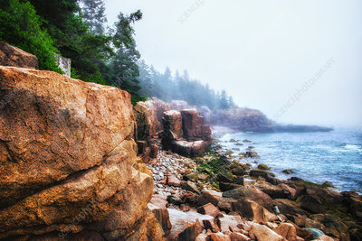 Acadia National Park in Maine, USA