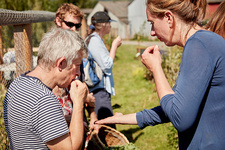 People tasting seeds and plants on a foraging course