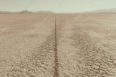 Single tire track on playa, Nevada, USA