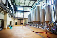 Interior view of a brewery with a row of metal beer tanks
