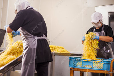 Workers in aprons and hats collecting freshly cut noodles