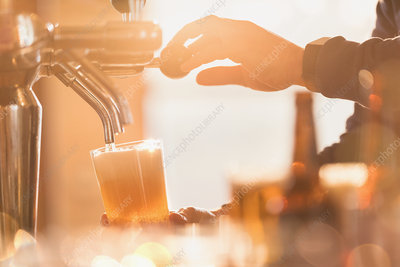 Male bartender pouring pint of beer