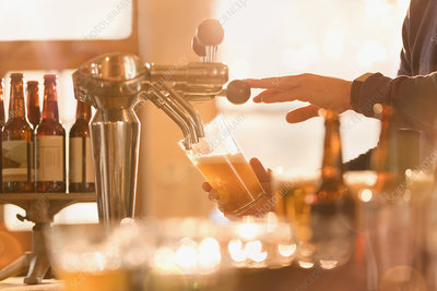 Bartender pouring beer from beer tap behind bar
