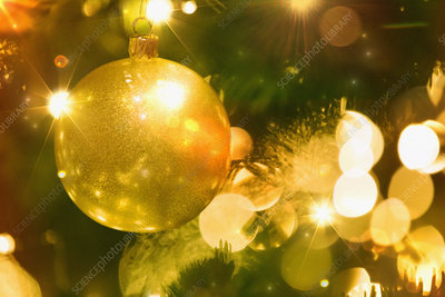 Golden ornament and lights on Christmas tree