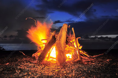 A log fire lit with leaping flames and glowing embers
