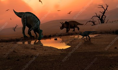 Dinosaurs at a watering hole, illustration