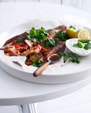 Plate of Moroccan salmon with yogurt