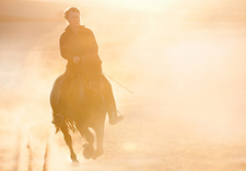 Silhouette of man riding horse in field