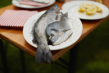 Plate of fish on table outdoors